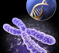 Опасен ли генетический анализ для матери и плода
