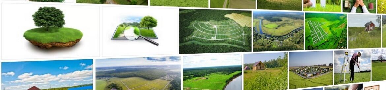 Как узнать собственника земельного участка
